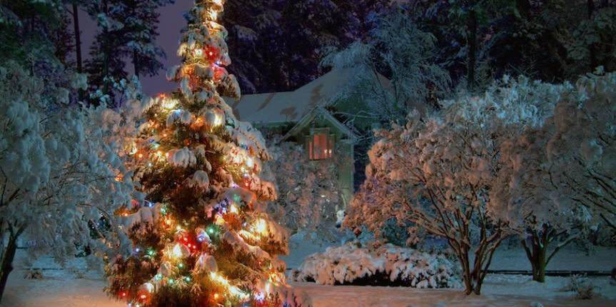 a-shining-christmas-tree-with-a-snowy-backdrop